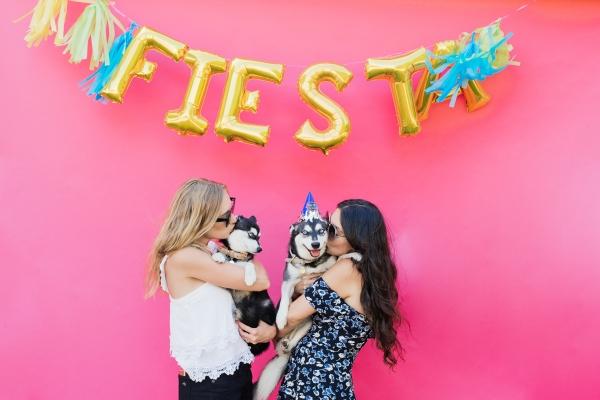 eatsleepwear-lola-miniaussie-dog-dogbirthday-dogparty-fiesta-kimberlylapides-23