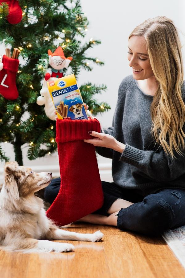 eatsleepwear, kimberly lapides, pedigree, dentastix, holidays, dog