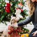 eatsleepwear, LOLA, Kimberly Lapides, Pedigree, Dentastix, Holidays, Dog