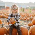 Pumpkin Patch Photo shoot