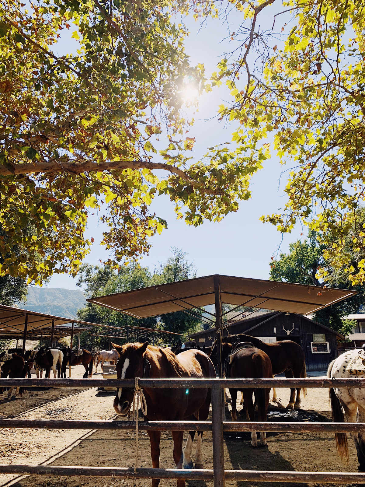 Horse stables at Alisal Guest Ranch and Resort
