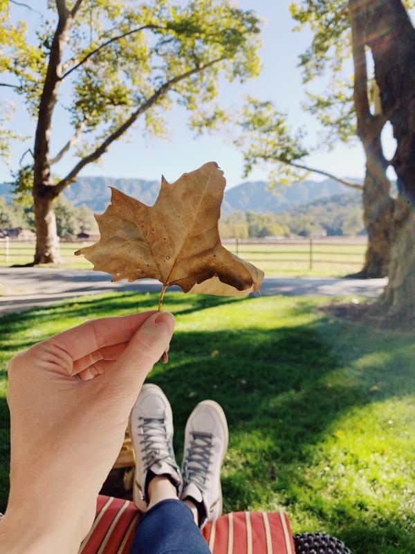 Fall at Alisal Guest Ranch and Resort