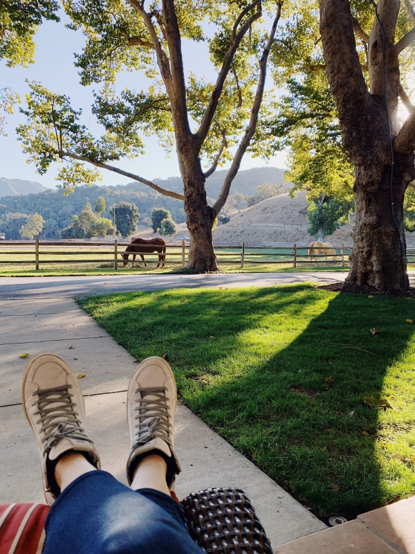 Horses view on porch of Suite at Alisal Guest Ranch and Resort
