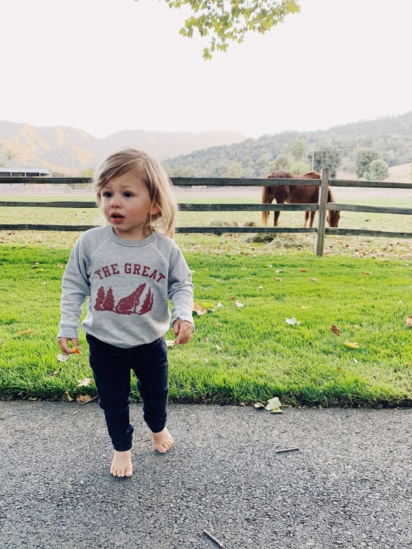 Toddler watching horses at Alisal Guest Ranch and Resort