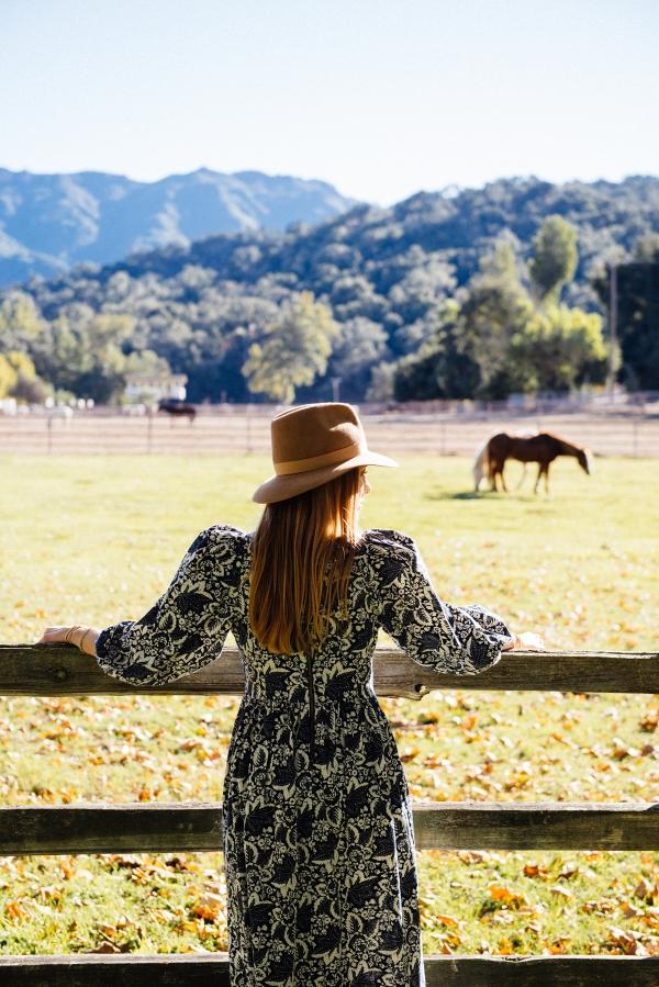 Watching horses at sunset at Alisal Guest Ranch and Resort