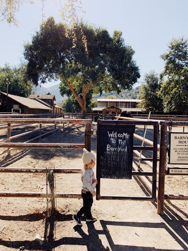 Kids barnyard at Alisal Guest Ranch and Resort