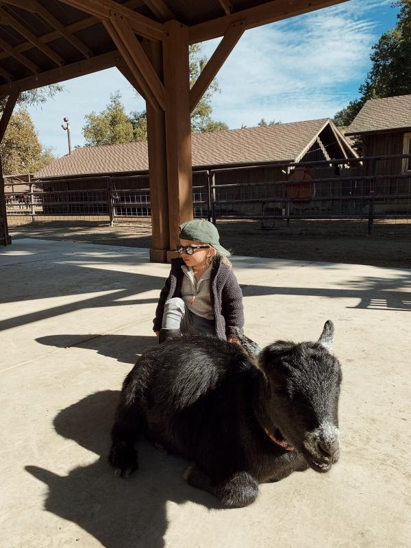 Toddler at kids Barnyard at Alisal Guest Ranch and Resort