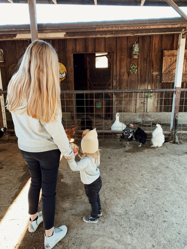 Mom and toddler in kid friendly barnyard at Alisal Guest Ranch and Resort